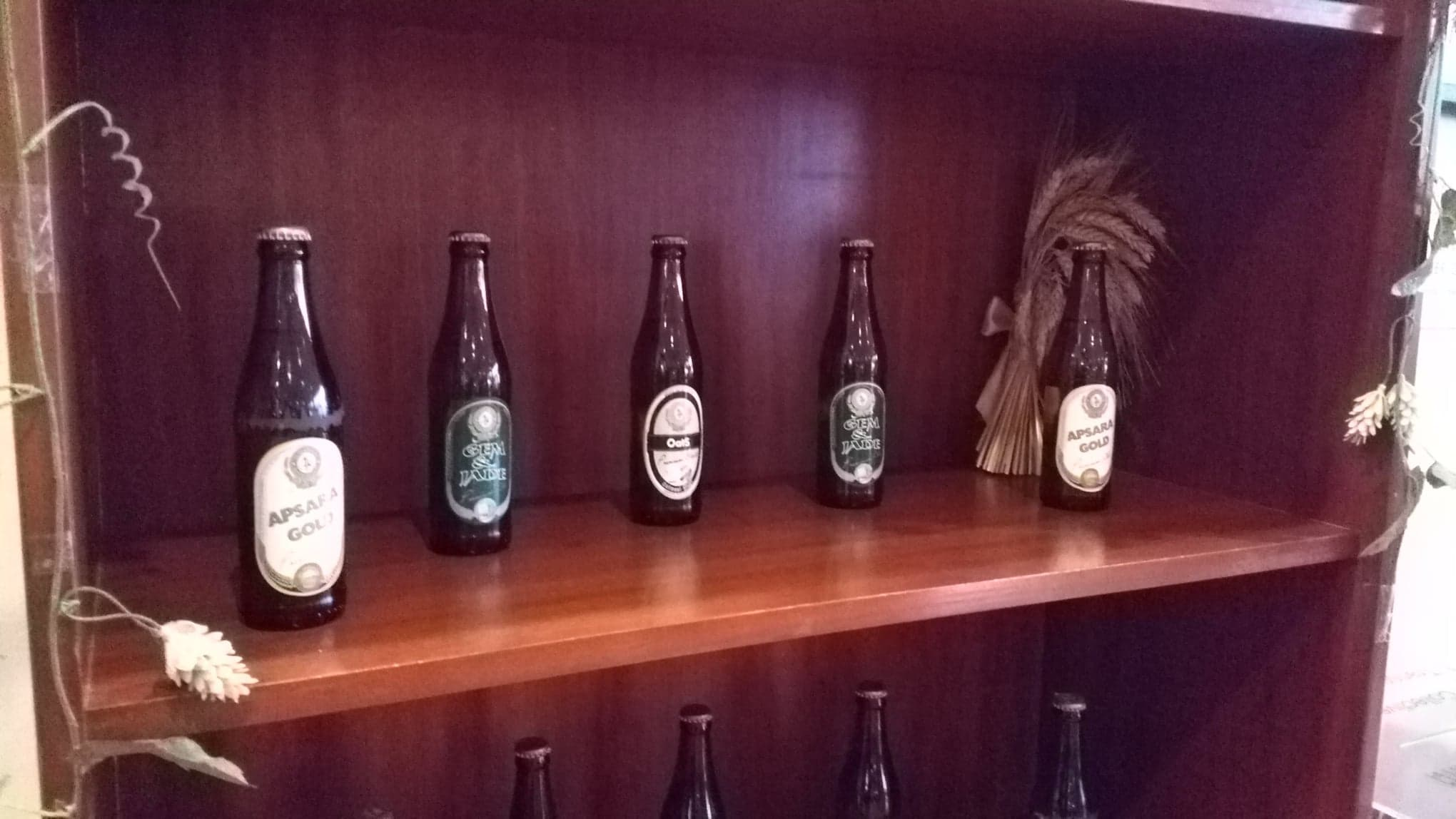 Himawary Cambodian Craft Brewery