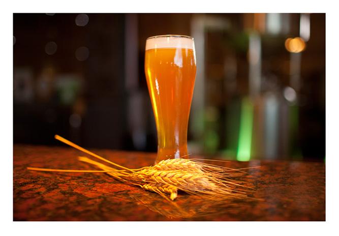 Beer from Himawari Microbrewery